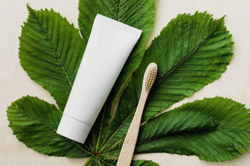 Feuille vert avec tube de dentifrice et brosse à dent en bambou
