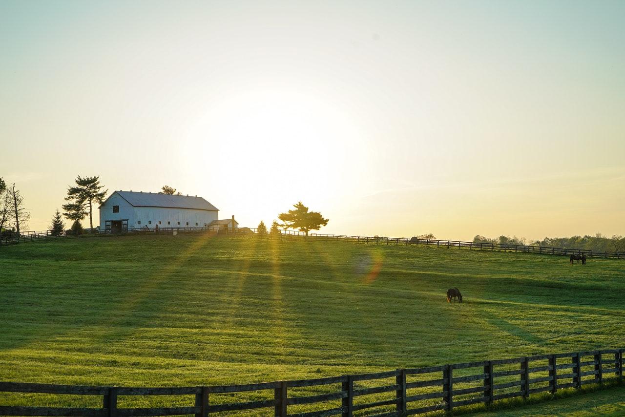 Grand ferme avec grand terrain, champs exploitation